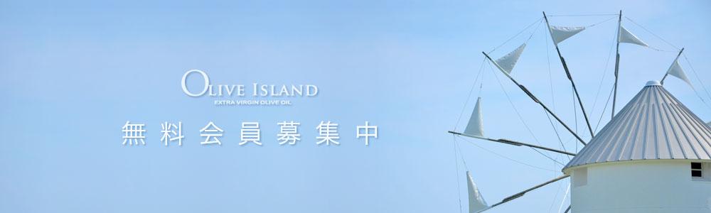 小豆島手延素麺(太麺)