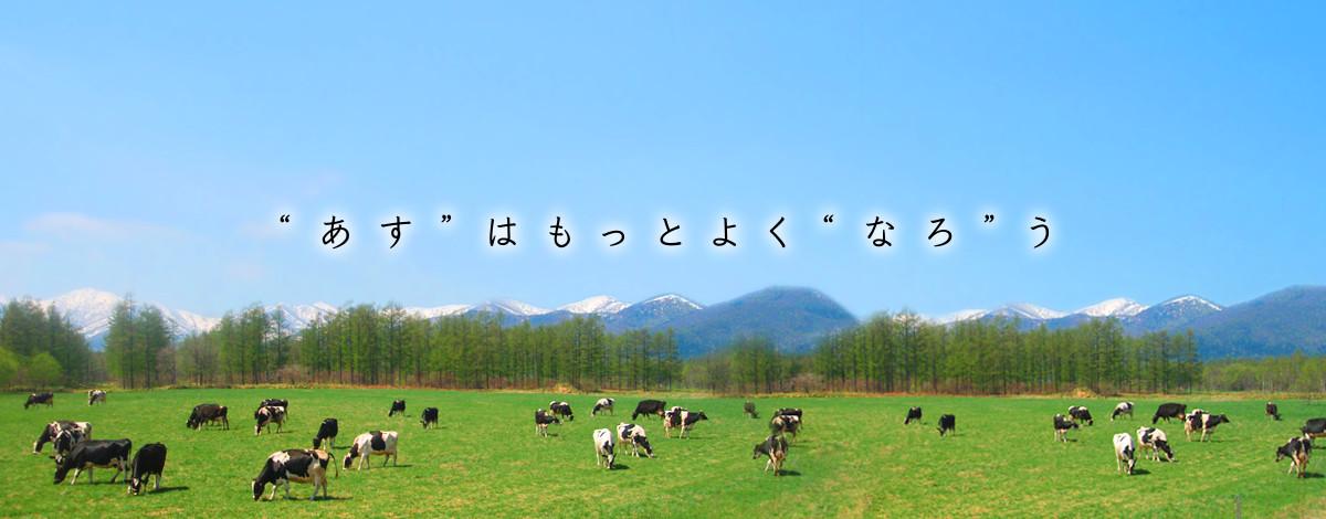 十勝若牛肩ロースステーキ・切落としとカップソフトアイスセット (送料込み)