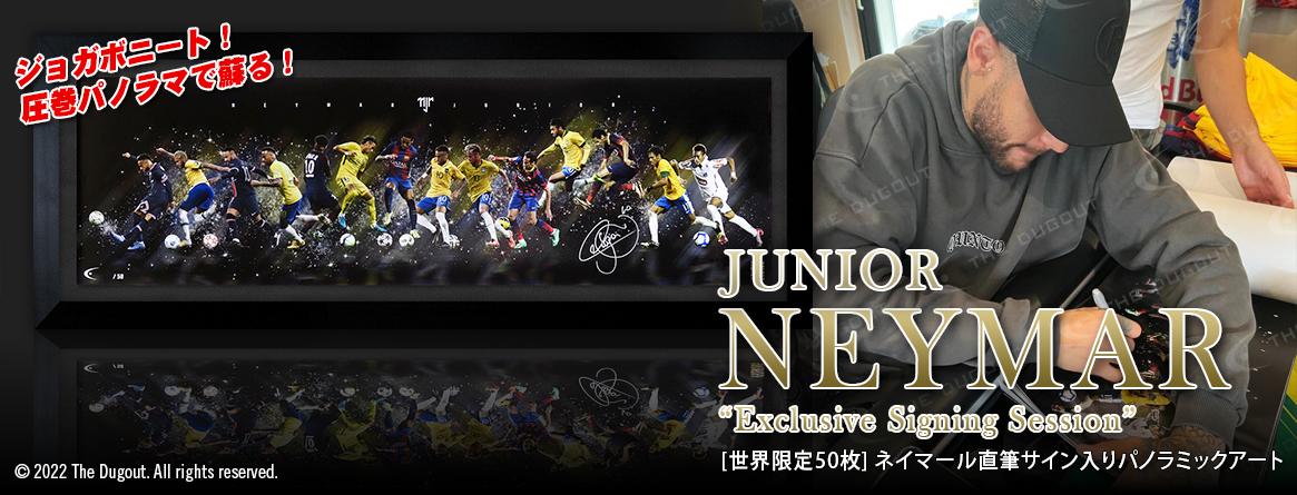 イブラヒモビッチ直筆サイン入りACミラン20/21ホームユニ特製フレーム