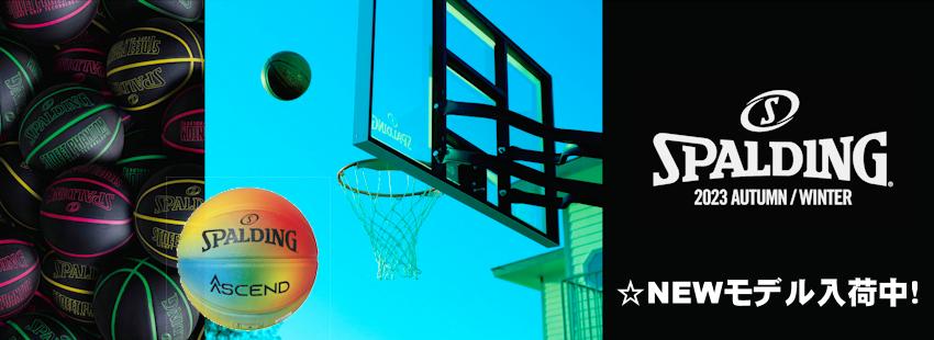 2020Winterバスケットゴールキャンペーン